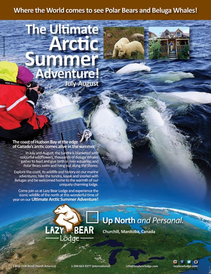 Lazy-Bear-Lodge_Spr15