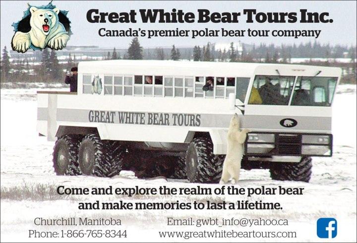 Great-white-bear-tours