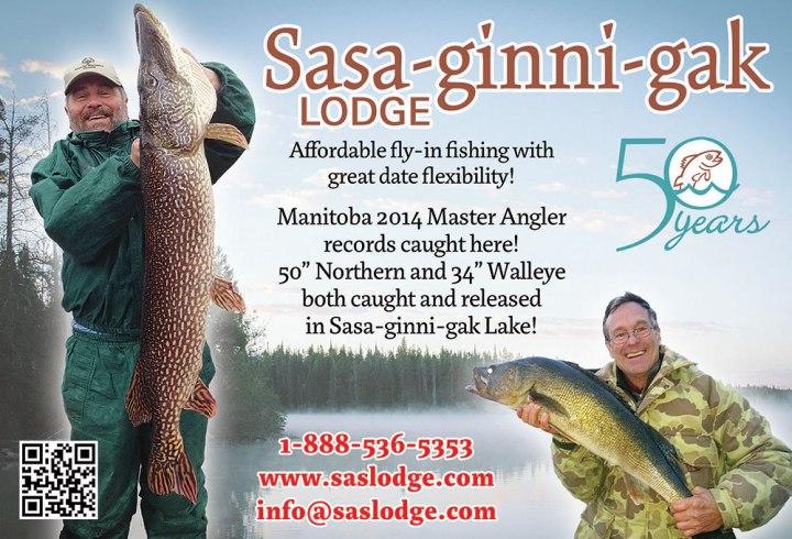 Sasa-Ginni-Gak-Spr15