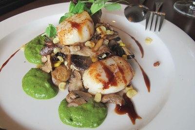 Pan-seared scallops with mushrooms.