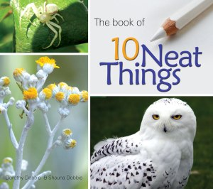 10neatthingsbook_cover
