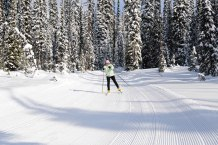 Big White Ski Resort has groomed cross country ski trails.