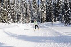 Big White Ski Resort has groomed cross country ski trails.