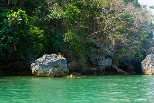 Below the stunning blue-green waters lie coral reefs.