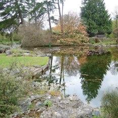 Cambridge Botanical Garden water feature.