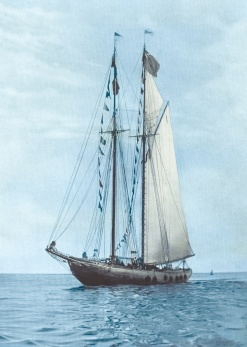 A photo of the original Bluenose.