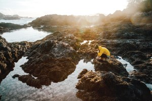 Explore the quiet tidal pools along the rugged shoreline.