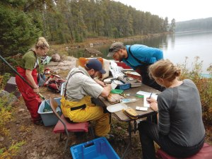 Scientists analysing fish on the banks of a lake.